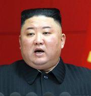 K-pop-stjärnan PSY / Kim Jong-Un. TT.