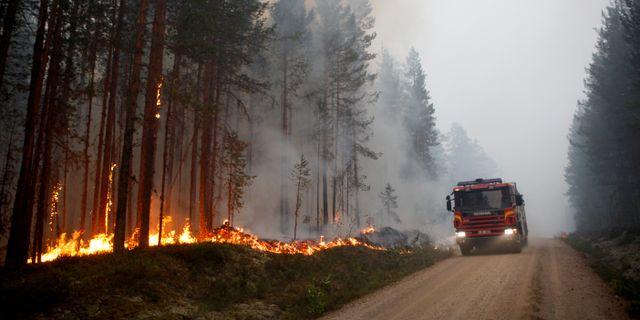 Från skogsbranden vid Kårböle strax utanför Ljusdal förra sommaren. Mats Andersson/TT / TT NYHETSBYRÅN