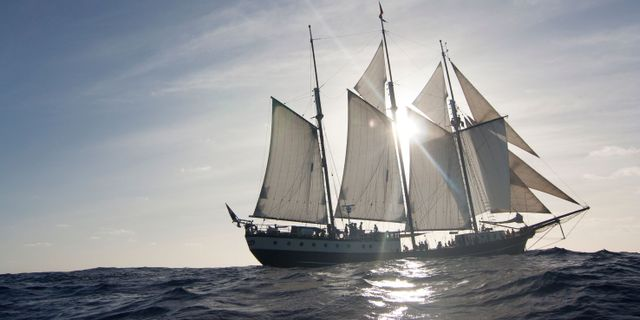 Segelfartyget Regina Maris. Sailtothecop