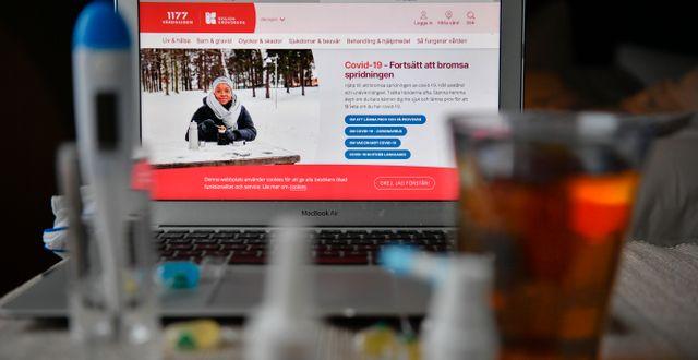 1177:s webbplats/Illustrationsbild Anders Wiklund/TT / TT NYHETSBYRÅN