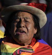 Anhängare till Evo Morales. JUAN MABROMATA / AFP