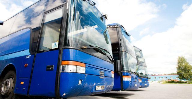 Bussar i Västerbotten AnnaKarin Drugge / TT NYHETSBYRÅN