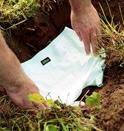 Ett par kalsonger grävs ner i jorden. Syftet är att ta reda på hur det står till med jordhälsan.  Arla.