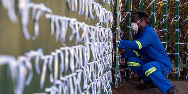 Rosetterna representerar alla som dött under coronapandemin i Sydafrika. Themba Hadebe / TT NYHETSBYRÅN