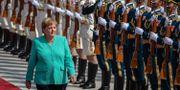 Tysklands förbundskansler Angela Merkel.  Roman Pilipey / TT NYHETSBYRÅN