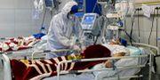 En patient vårdas på sjukhus i Teheran Ali Shirband / TT NYHETSBYRÅN
