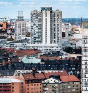 Tomas Oneborg/SvD/TT / TT NYHETSBYRÅN