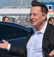 Elon Musk. Patrick Pleul / TT NYHETSBYRÅN