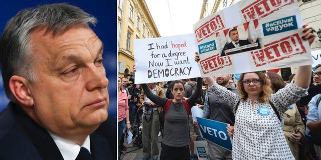 Viktor Orbán/protest mot nedstängningen av European Central University. TT