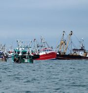 Arkivbild. Brittiska och franska fiskebåtar i Engelska kanalen. Pierre Guillaume / TT / NTB Scanpix