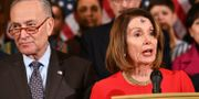 Schumer och Pelosi. MANDEL NGAN / AFP