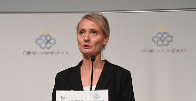 Karin Tegmark Wisell. Fredrik Sandberg/TT / TT NYHETSBYRÅN