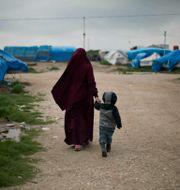 Lägret Roj i norra Syrien. Maya Alleruzzo / TT NYHETSBYRÅN