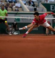 Novak Djokovic pressades hårt av Rafael Nadal Christophe Ena / TT NYHETSBYRÅN