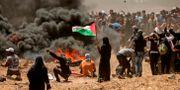 En palestinsk kvinna håller i en flagga samtidigt som hon bevittnar sammandrabbningarna mellan israeliska och palestinska styrkor. MAHMUD HAMS / AFP