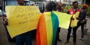 Demonstranter för och emot lagarna i Nairobi. BAZ RATNER / TT NYHETSBYRÅN