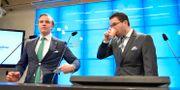 Tobias Andersson (SD), handelspolitisk talesperson och Jimmie Åkesson (SD), partiledare Sverigedemokraterna presenterar partiets valplattform inför EU-valet Jessica Gow/TT / TT NYHETSBYRÅN