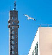 Illustrationsbild: Tornet vid LM Ericssons gamla fabriksbyggnad vid Telefonplan. Jessica Gow/TT / TT NYHETSBYRÅN