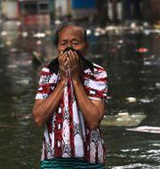 En kvinna i översvämmade Jakarta. Dita Alangkara / TT NYHETSBYRÅN