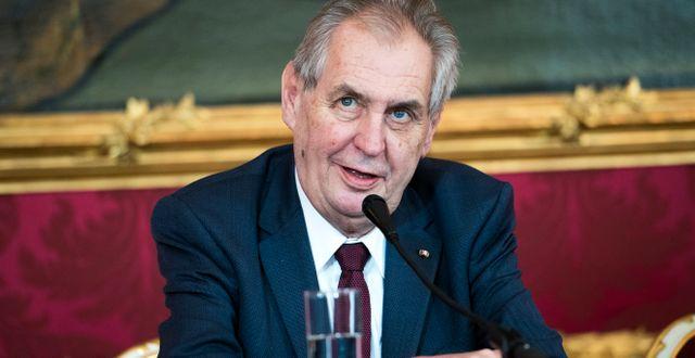 Milos Zeman, president i Tjeckien. Michael Gruber / TT NYHETSBYRÅN