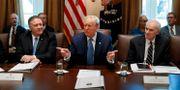 Trump vid tisdagens kabinettsmöte i Vita huset. Alex Brandon / TT NYHETSBYRÅN