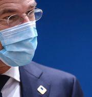 Nederländernas premiärminister Mark Rutte.  Kenzo Tribouillard / TT NYHETSBYRÅN
