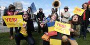 Demonstrationer för direktivet utanför EU-parlamentet. FREDERICK FLORIN / AFP