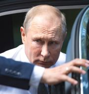 Rysslands president Vladimir Putin. Alexander Zemlianichenko / TT NYHETSBYRÅN/ NTB Scanpix