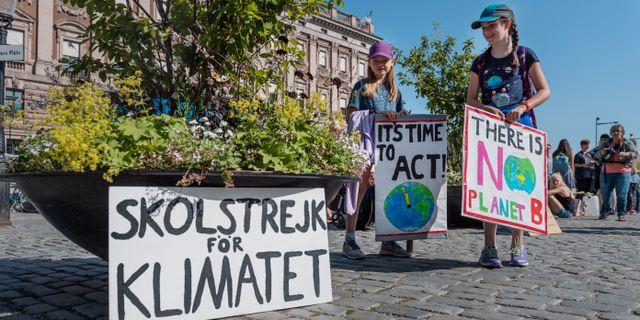 Strejkande elever i Stockholm. Stina Stjernkvist/TT / TT NYHETSBYRÅN