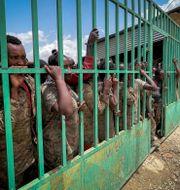 Tillfångatagna militärer tidigare i sommar.  TT NYHETSBYRÅN