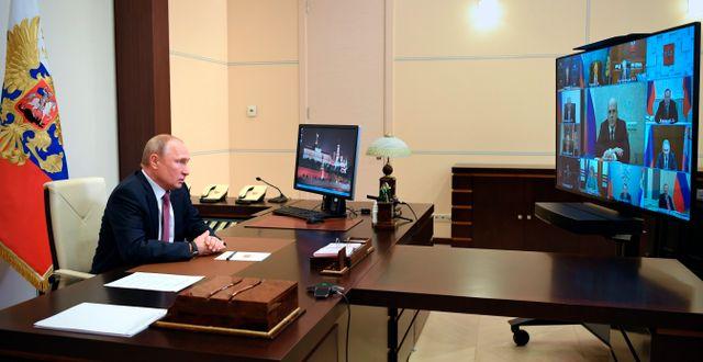 Vladimir Putin Alexei Nikolsky / TT NYHETSBYRÅN