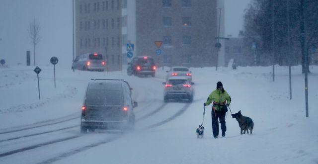 Sundsvall under gårdagen. Mats Andersson/TT / TT NYHETSBYRÅN