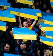 Fotbollsfans håller i ukrainska flaggor. GLEB GARANICH / BILDBYRÅN
