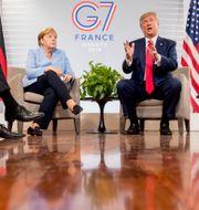 Angela Merkel och Donald Trump på G7-mötet i Frankrike förra året. Andrew Harnik / TT NYHETSBYRÅN