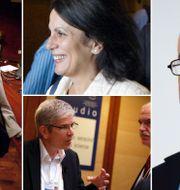 Arkivbilder: Anne Krueger, Carmen Reinhart, Paul Romer och Kenneth Rogoff. TT