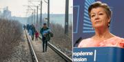 Migranter/Ylva Johansson.  TT