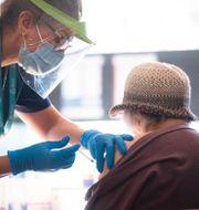 En äldre dam vaccineras mot covid-19 i Stockholm, arkivbild. Fredrik Sandberg/TT / TT NYHETSBYRÅN