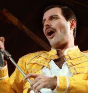 Freddie Mercury Juli 1986 MARCO ARNDT