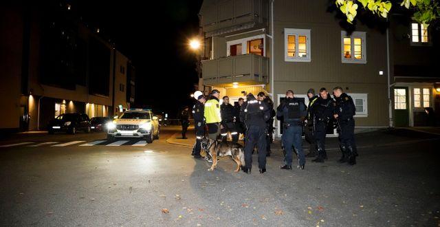 Polisinsaten i Kongsberg Håkon Mosvold Larsen / TT NYHETSBYRÅN