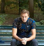Aleksej Navalnyj. TT NYHETSBYRÅN