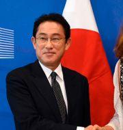 Arkivbild: EU:s handelskommissionär Cecilia Malmström tillsammans med Fumio Kishida, Japans dåvarande utrikesminister, 2017.  JOHN THYS / AFP