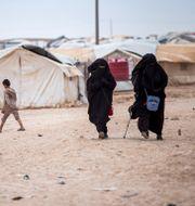Kvinnor i Al-Hol-lägret i Syrien.  Baderkhan Ahmad / TT NYHETSBYRÅN