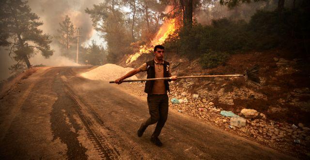 Brandman i Bodrum TT NYHETSBYRÅN