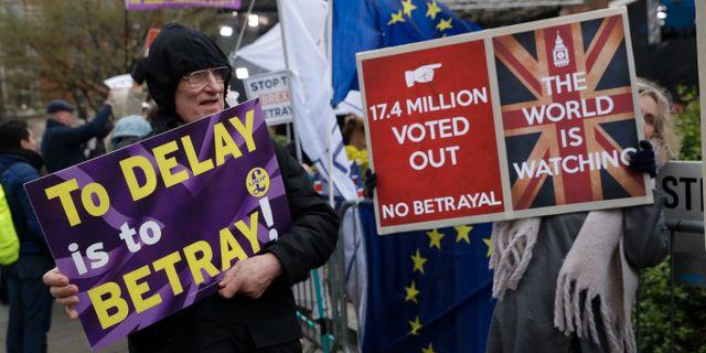 Demonstranter utanför det brittiska parlamentet Matt Dunham / TT NYHETSBYRÅN/ NTB Scanpix