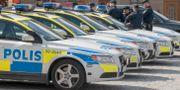 Polisbilar 50080 / TT NYHETSBYRÅN