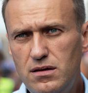 Jens Stoltenberg / Aleksej Navalnyj / Boris Johnson TT