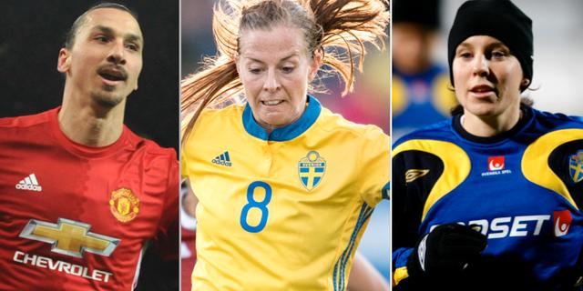 Zlatan Ibrahimovic, Lotta Schelin och Hanna Ljungberg. TT