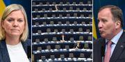 Illustrationsbilder på Magdalena Andersson, Stefan Löfven och EU-parlamentet TT