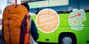 En av Flixbus bussar, arkivbild. Christoph Schmidt / TT NYHETSBYRÅN