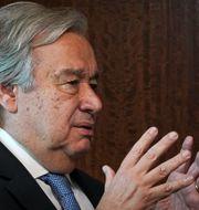António Guterres. Bebeto Matthews / TT NYHETSBYRÅN